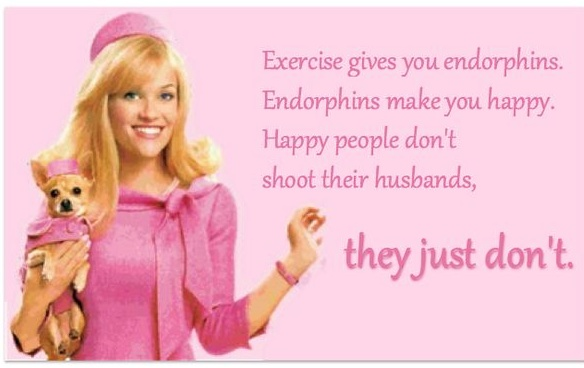 10 Most Useful Life Lessons Quotes From Legally Blonde The Success